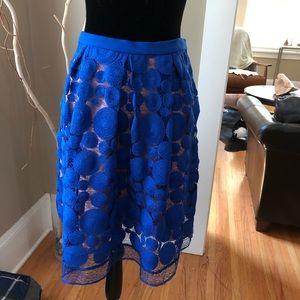 """Anthropologie Eva Franco """"Albastru"""" Skirt"""